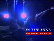 IN THE MIND OF CRIMINAL PROFILERS (2000)